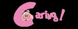 Rollin Pig No Added Preservatives